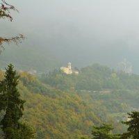 В тумане :: Николай Танаев