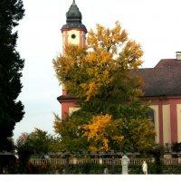 Рыжая осень :: kuta75 оля оля