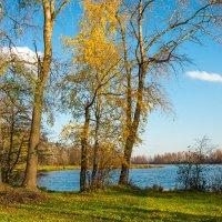 Октябрь на Угольном острове 12 :: Виталий