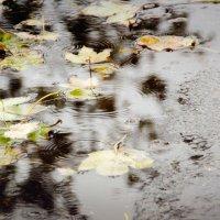"""""""В моём сердце идёт дождь"""" (с) :: Инна Малявина"""