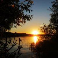 На закате дня :: Михаил Цегалко