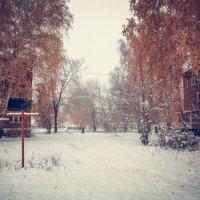 Первый зимний пейзаж :: Вячеслав Баширов