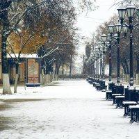 первый снег в городе :: Вадим Виловатый