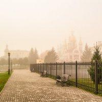 Туман похож на обман................ :: Александр Селезнев