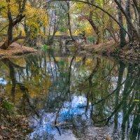 Старый акведук на Черной речке :: Игорь Кузьмин