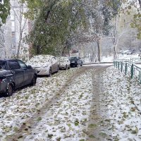 В Самаре первый снег :: Александр Алексеев