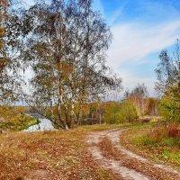 Осенний  цвет. :: Валера39 Василевский.