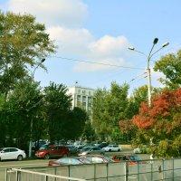 Осень в городе :: юрий Амосов