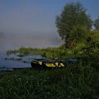 Утро на Десне :: Александр Березуцкий (nevant60)