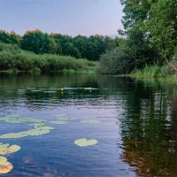 Озеро Усовье :: Александр Березуцкий (nevant60)