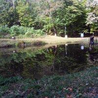 Есть рыбка в Гайдамацком озере! :: Наталья