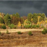 Уж небо осенью дышало... :: Виктор Марченко