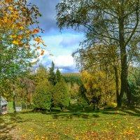 Осень в деревне :: Милешкин Владимир Алексеевич