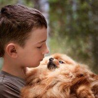Собаки умеют разговаривать. Но только с теми, кто умеет слушать. :: Наталья Мячикова