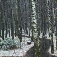 Москва, Измайловский парк. Выпал снег. :: Игорь Герман