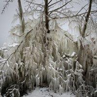 Скульптор Зима. :: Александр Гурьянов