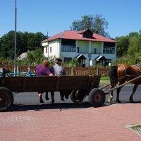 Содружество видов транспорта :: Ольга Чистякова