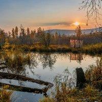 Осенняя грусть :: vladimir Bormotov
