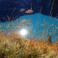 солнце в холодной воде :: Elena Wymann