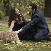 король лев :: Екатерина Кузьмина