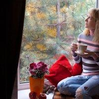 Тёплая, уютная осень... :: Райская птица Бородина