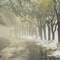 осень в парке :: Мария Климова
