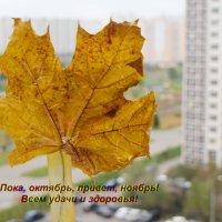 Последний лист :: Татьяна Помогалова