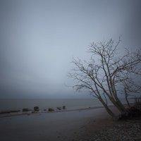 Холодный осенний день :: Дима Хессе