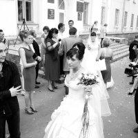 Свадебный переполох :: Лариса Сливина