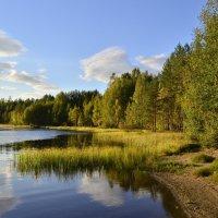 Летняя пора на озере Вахерярви. :: Владимир Ильич Батарин