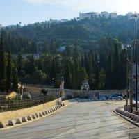Иерусалим. Вид на Масличную гору. :: Игорь Герман