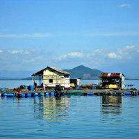 Вьетнам :: Михаил Столяров