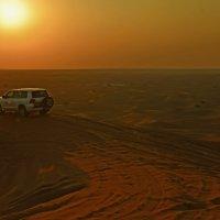 Пустынное сафари в Дубай....) :: Валентина Потулова