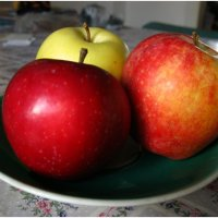 Эх яблочки .... :: анатолий томас