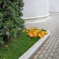 Осень в городе. Желтеем благородно. :: Ирина Хан
