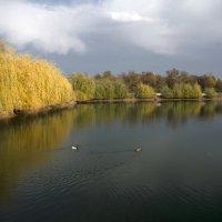 Осень в городе :: Александр Грищенко