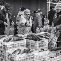 Свежая рыба :: Андрей Лобанов