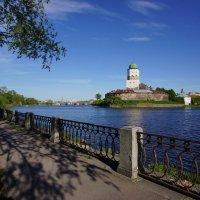 Выборгский замок. :: Vladimir