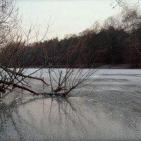 Зимний пруд :: Надежда Бахолдина
