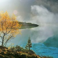 солнечный туман :: Elena Wymann