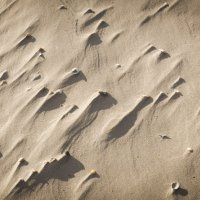 Тени на песке :: Алексей Салло
