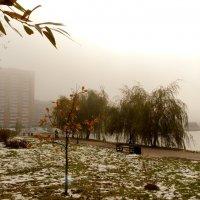 город в тумане :: Александр Прокудин