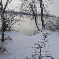 Зима. :: Галина