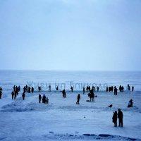 Ледяная визитка Байкала :: Нина