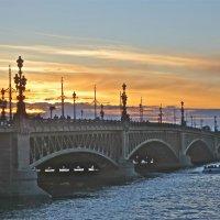 Троицкий мост на закате :: Елена
