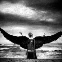 Wings of Sorrow :: Ruslan Bolgov