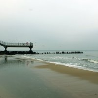 Осенний пляж.. :: Elena N