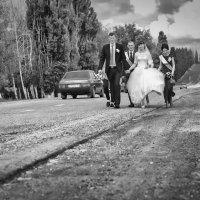 Свадьба Артема и Александры :: Андрей Молчанов