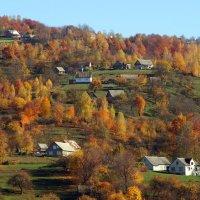 Осінь в Карпатах :: Степан Карачко