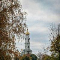 Вид на Успенский собор :: Валерий Голоха